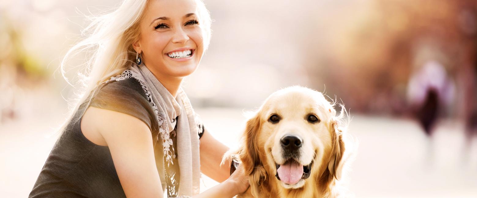 Gezielte Nahrungsergänzung für Hunde